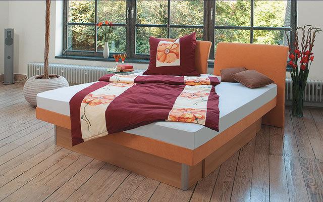 wasserbett beratung wasserbetten und vieles mehr. Black Bedroom Furniture Sets. Home Design Ideas